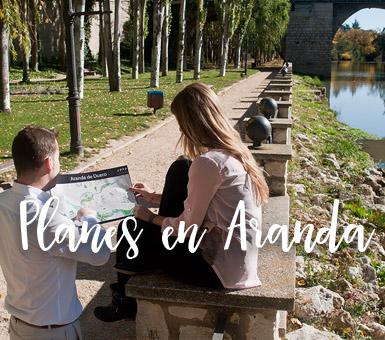 Planes en Aranda